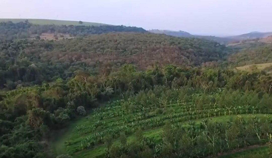 Vídeo – Em harmonia com o planeta Terra